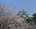 Nagoya castle , 名古屋城 - panoramio (4).jpg