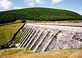 Nant-y-moch Dam - geograph.org.uk - 4886.jpg