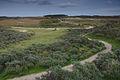 Nationaal Park Zuid-Kennemerland (14).jpg