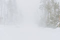 Near white out conditions (23401161113).jpg
