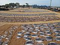 Negombo beach, drying fish (001).JPG