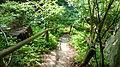 Neuer Wildenstein - Nationalpark Sächsische Schweiz 21.JPG
