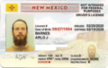 New Mexico standard horizontal driver identification card obverse - non-PubL109-13 and with neutral gender designator and number and address redaction.png