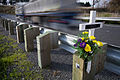 New Zealand - Cross and crash memorial - 9722.jpg