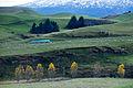 New Zealand - Landscape - 8674.jpg