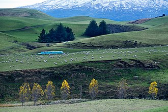 Geography of New Zealand - Rural landscape close to Mt Ruapehu