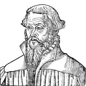 Nicolaus Gallus - Nicolaus Gallus by Lucas Cranach