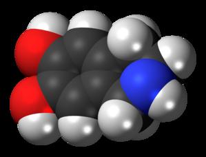 Norsalsolinol - Image: Norsalsolinol molecule spacefill