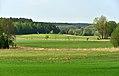 Obszar Chronionego Krajobrazu Wzgórza Sokólskie widok z okolic wsi Białogorce.jpg