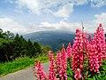 Okhrey Sikkim.jpg