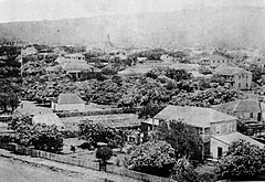 Old Iolani Palace and adjacent premises, ca. 1850s.jpg