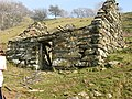 Old Shepherd's hut - geograph.org.uk - 394103.jpg
