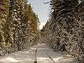 Old road - panoramio (1).jpg