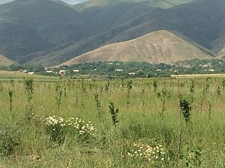 Orchards near Azatek, Vayots Dzor, Armenia 2615.jpg