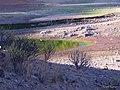 Orilla de colores - panoramio (1).jpg