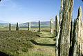 Orkney - Ring of Brodgar (3720949225).jpg