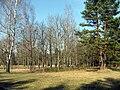 Příroda poblíž Salaspilsu (2).jpg