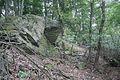 PP Číčovický kamýk - skalní výchozy v lese na jižní straně.jpg