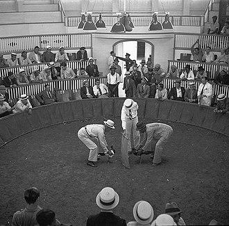 Spanish settlement of Puerto Rico - Cockfighting club in Puerto Rico, 1937.