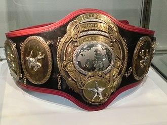 PWF World Heavyweight Championship - The PWF Heavyweight Championship belt