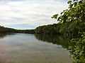 Pachaug Trail - Green Fall Pond northernmost shore looking south, Voluntown, CT.jpg