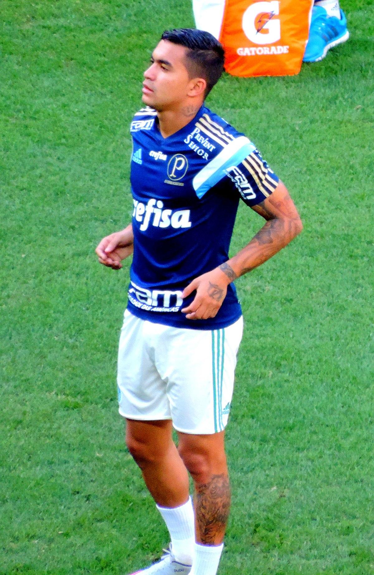1200px Palmeiras_x_Santos_ _Brasileir%C3%A3o_2015_%2819989902371%29
