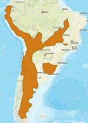 PampasCat distribution.jpg