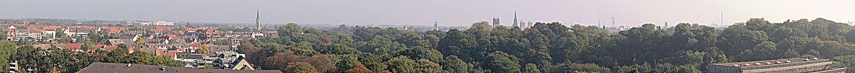 Панорама: слева — жилой квартал, в центре за деревьями видны башни церквей исторического центра города.