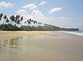 Pantai Desa Palam.jpg