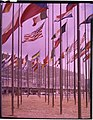 Paolo Monti - Servizio fotografico (Torino, 1961) - BEIC 6337315.jpg