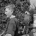 Papagaai-dragers in Artis, Bestanddeelnr 904-6784.jpg