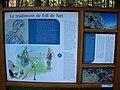 Parco Naturale Fanes 18.jpg
