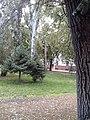 Park - Czuczora G. ul. 10.jpg