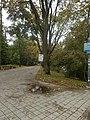 Park miejski w Kielcach (109) (jw14).JPG