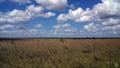 Parque-Nacional-das-Emas 'campo Limpo.png