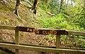Path, Crawfordsburn Glen (4) - geograph.org.uk - 785003.jpg