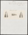 Pelamis bicolor - kop - 1837 - Print - Iconographia Zoologica - Special Collections University of Amsterdam - UBA01 IZ11800195.tif