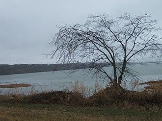 Ninette, Manitoba - Image: Pelican Lake near Ninette Manitoba