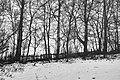 PermaLiv Faarlundsgutua 07-02-24.jpg