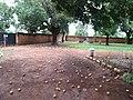 Photo taken by Rahul Ingle, May 2012 (7205606448).jpg