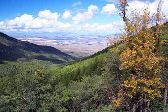 Pinal Mountains - Pinal Mountains