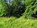 Pirna, Germany - panoramio (461).jpg