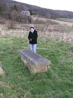 Plague Stone, Eyam - geograph.org.uk - 50828