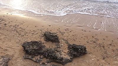 Playa de Sanlúcar 05.jpg