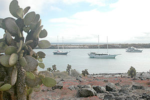 English: Plaza Island and cactus, Galapagos Is...