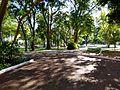 Plaza Uruguaya - Asunción.jpg