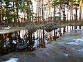 Pludi 2011 - panoramio (9).jpg