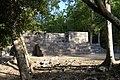 Poetén Campechan, Calakmul, Campeche (22011635488).jpg