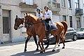 Politie te paard in Brussel.jpg
