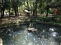 Pond of Oasahiko Shrine 2.JPG